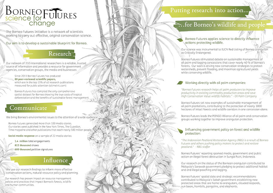 Borneo Futures infographic small.jpg