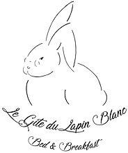 LapinBlancFinal - Copie (2).jpg