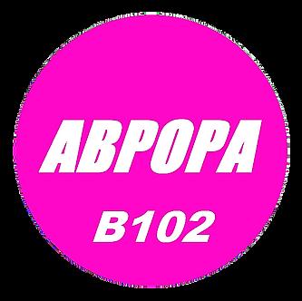 B102 полная лицензия