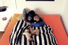 Monkeyys life_4.JPG