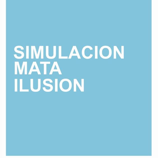6-Simulacion%20mata.jpg