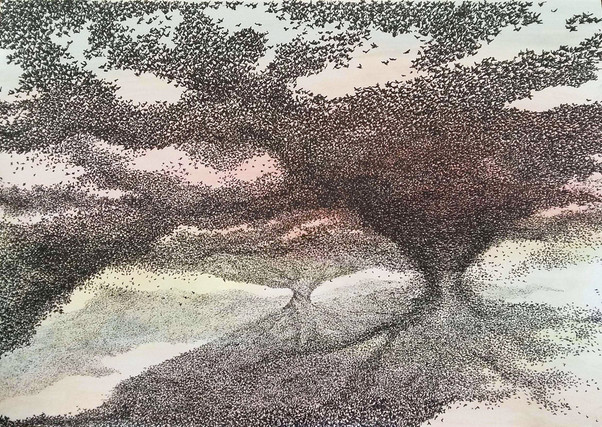 Starlings Swarm
