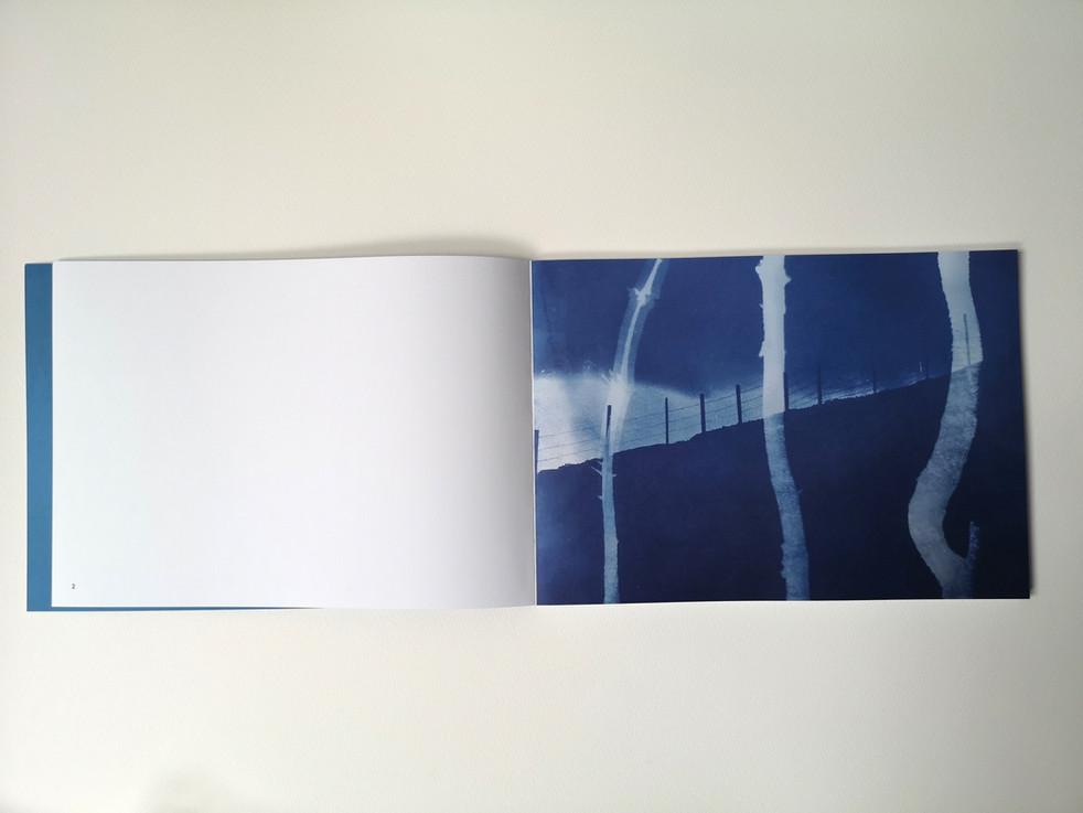"Printed artist book ""Blåtimen"" 2020"