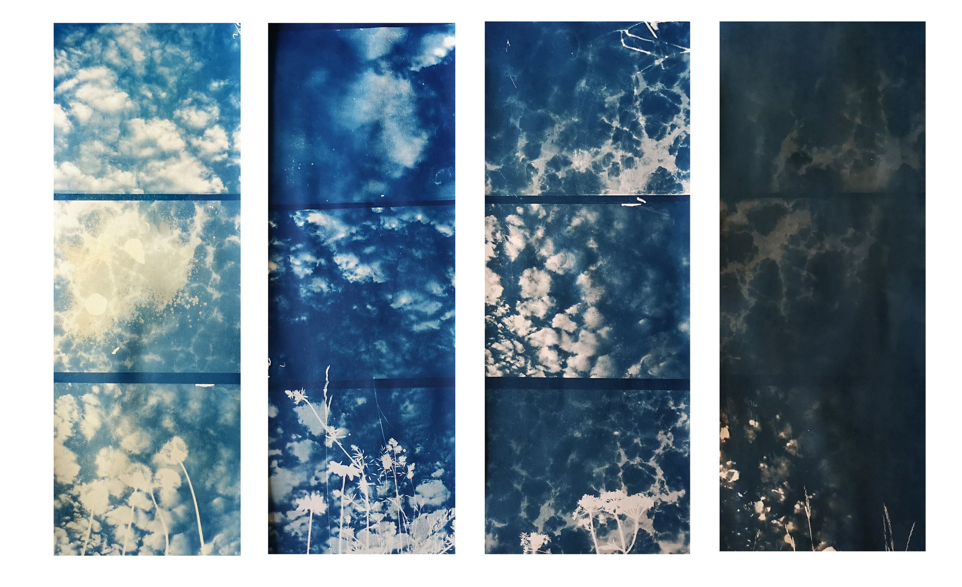 """From light to darkness"" toned cyanotype"