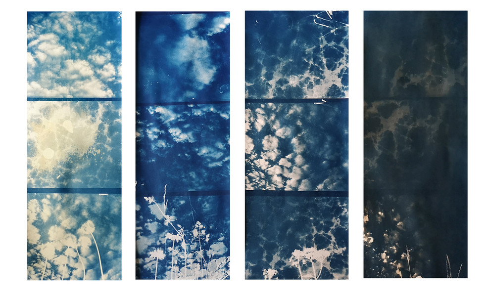 """""""From light to darkness"""" toned cyanotype"""