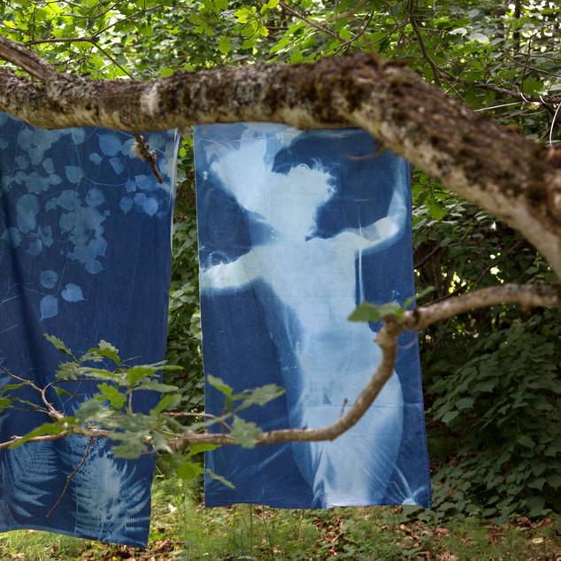 Cyanotypi på stoff - fra hagen.jpg