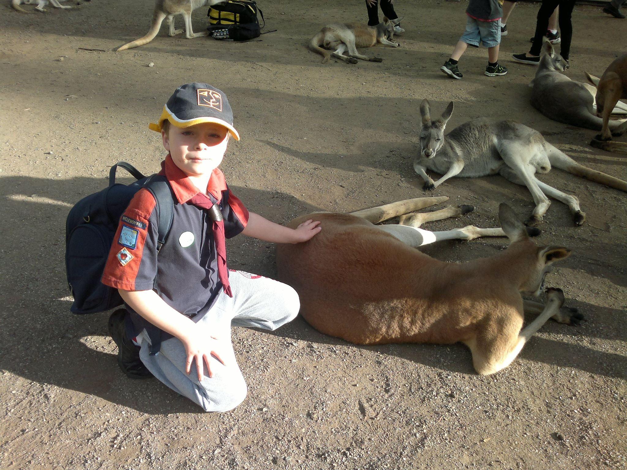 Joey_Kylie mcqueen 2014 kangaroo