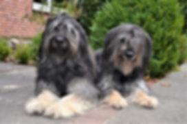 Dali und Carmela2.jpg
