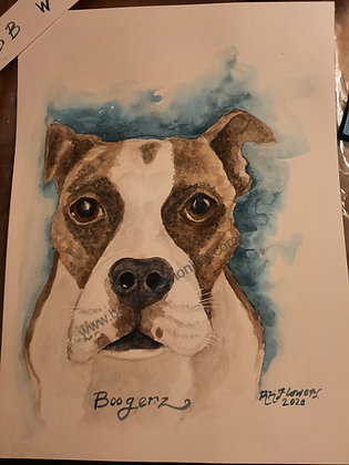 Pet Commissions