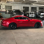 Mustang got new shoes