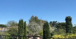Chambre 5 vue sur le jardin