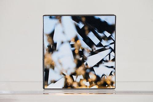 5x5 Metallic Print Mounted on Panel