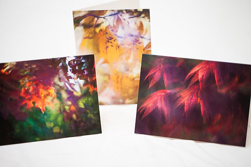 Notecard pack of 6 - Surreal Fall Leaves