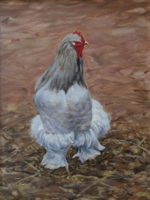 "French Rooster (18""x 14"")"