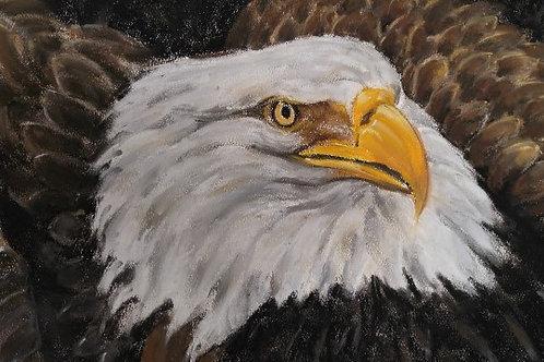 "Eagle's Ire (10"" x 13"")"