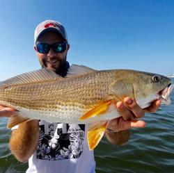 B Redfish 2