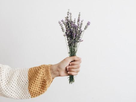 Lavendel - das Allrounder Öl