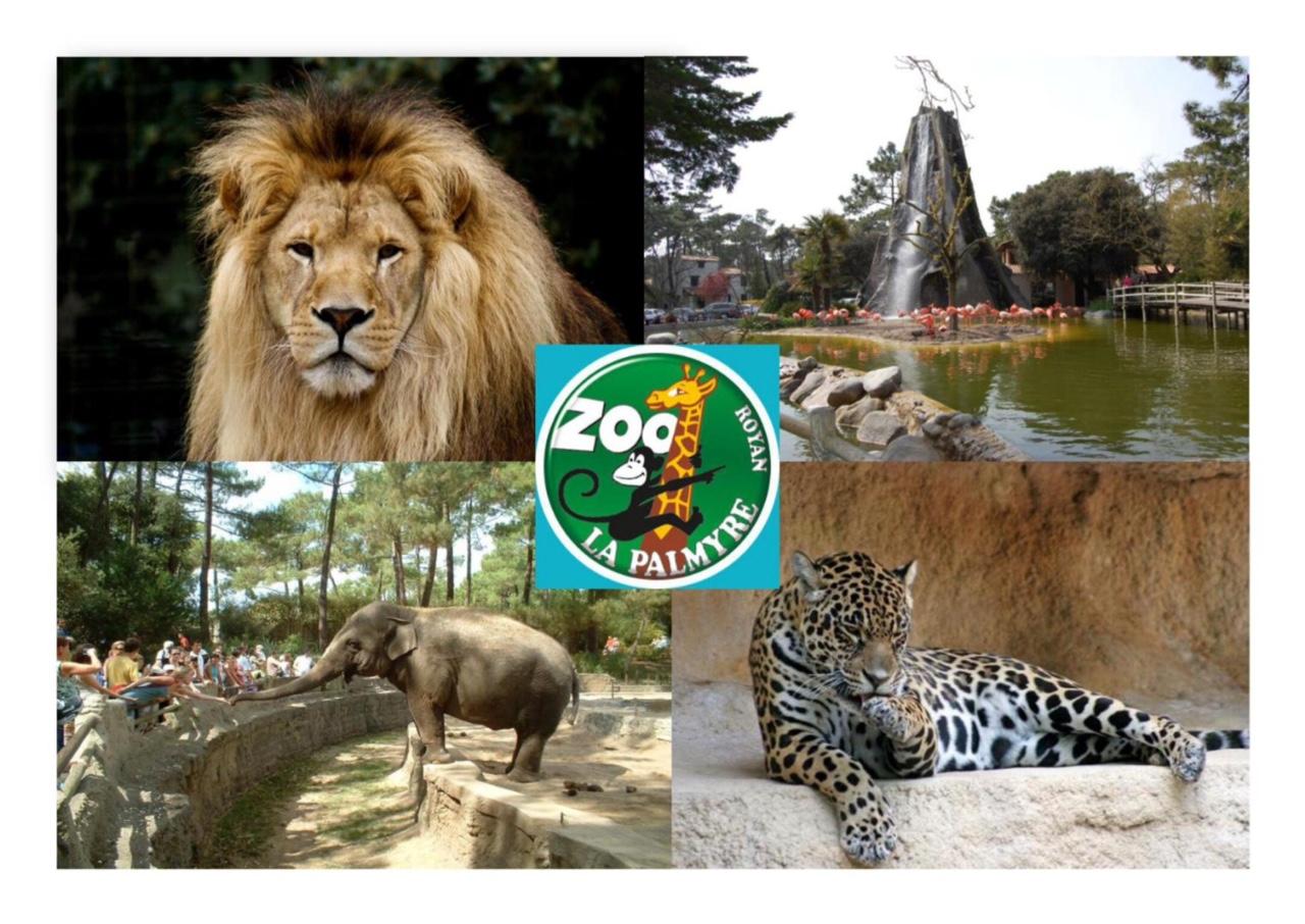 zoo de la palmyre3