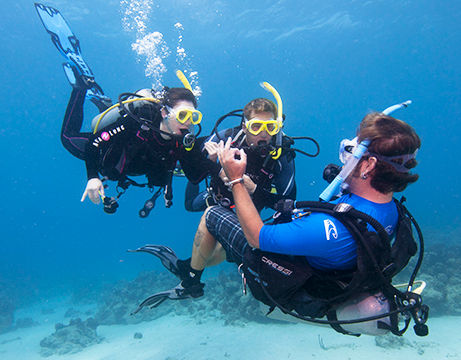 scuba diving in the ocean for begginers