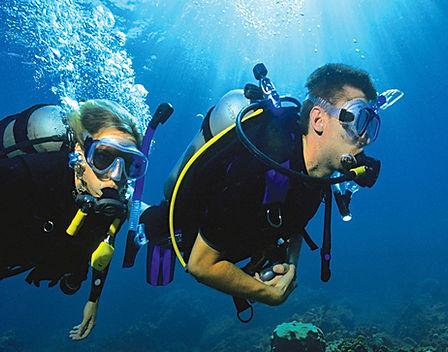 scuba diving in the ocean