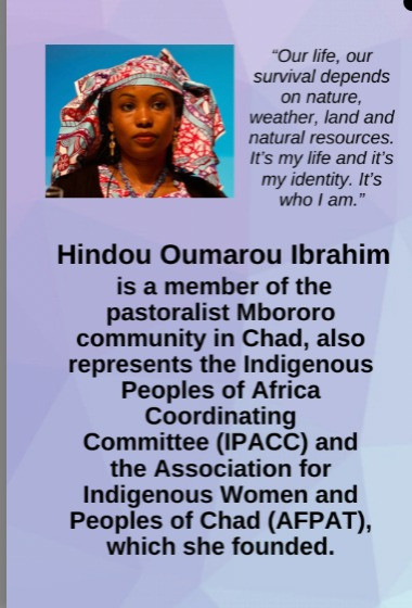 Know Your Heroes -  Hindou Oumarou Ibrahim -Phoenix Mural Celebrating Women of Color Fighting the Climate Crisis