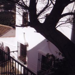 San_Juan_-_Vega_del_río_Verde_-_Almuñeca