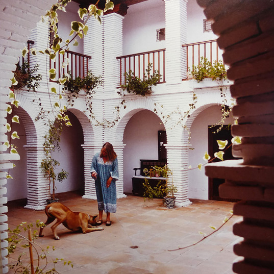 Hotel la Tartana - La Herradura- Donald
