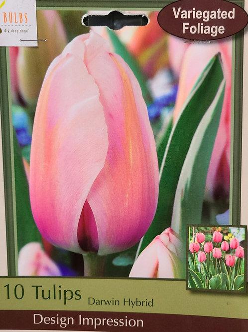 Tulip - Design Impression