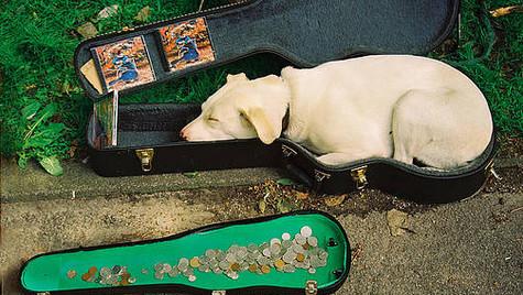 Sleeping Troubadour