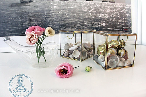 Brass Glass Box   קופסת זכוכית