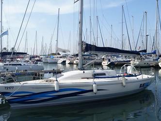 בלו וויב חוזרת לים ובגדול!!! קפטן אלף - עיצוב גרפי בהשראת ים, רוח וגלים...