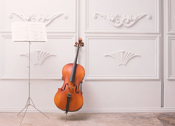 Wedding String Musician