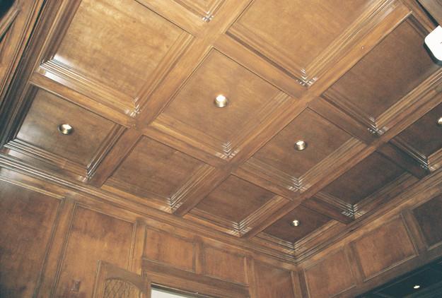 Den Ceiling