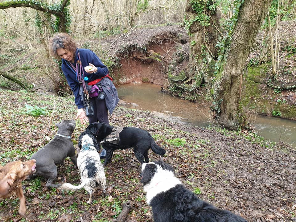 Ali Farbrother feeding dogs treats whilst out on a walk
