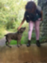 Ali Farbother from Time 4 A Walk with Staffy at The Dramway with Time 4 A Walk dog walking service