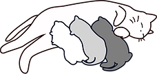 貓媽貓寶.png