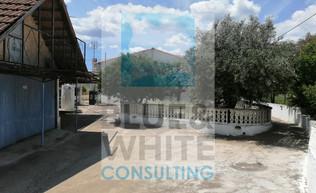 BWP162 image 3.jpg