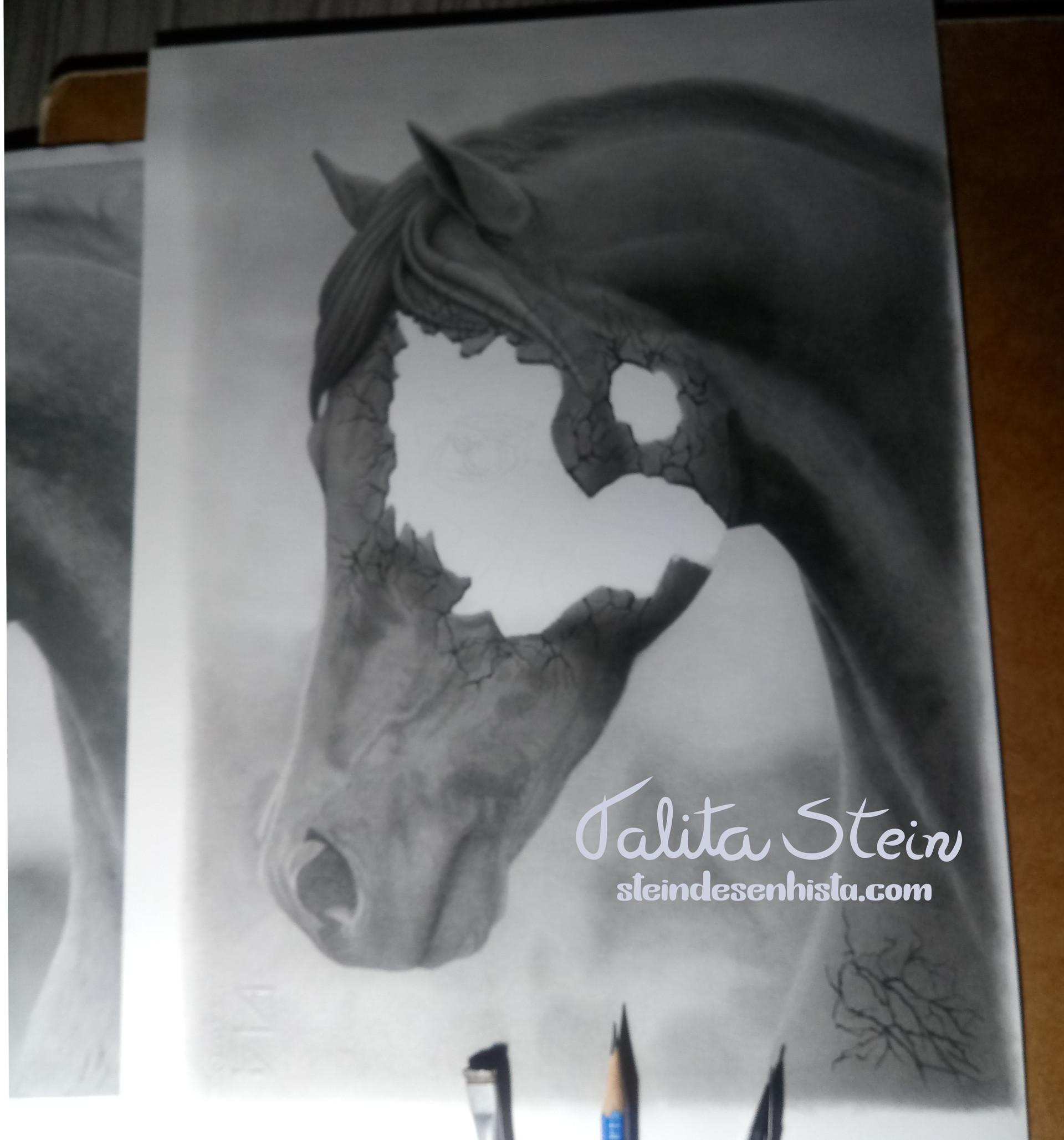Adestramento equestre-Equestrian Dressag