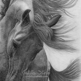 Arabians II: Arte realizada com alterações sobre a foto de referência