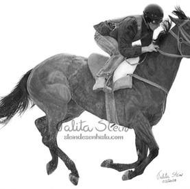 Cavalo de corrida III: Modificações realizadas diferenciando o desenho da referência