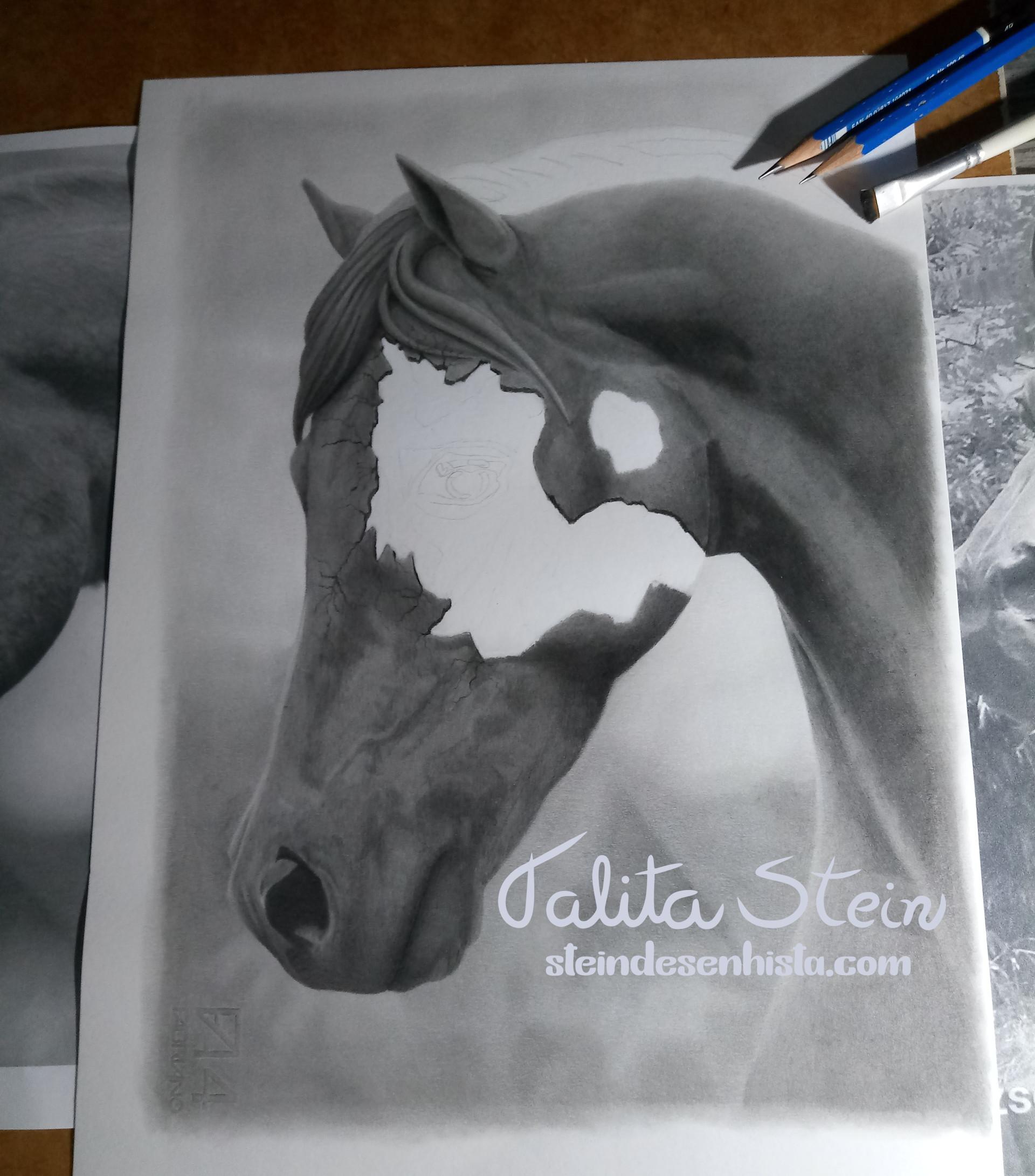 Quarto_de_milha-Quarter_Horse-Puro-sangu