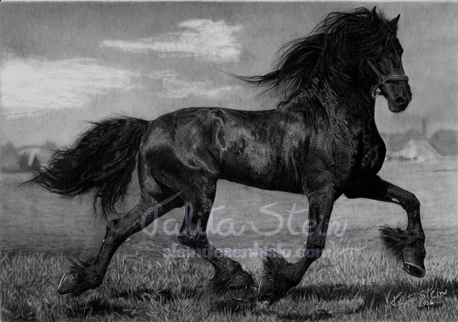 Friesian Desenho Realista De Cavalo Frisio Baseado Em Foto De
