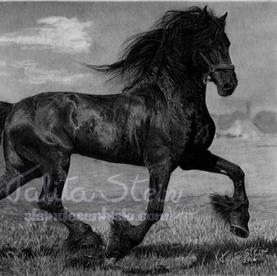 Friesian: Desenho realista de cavalo Frísio baseado em foto de referência