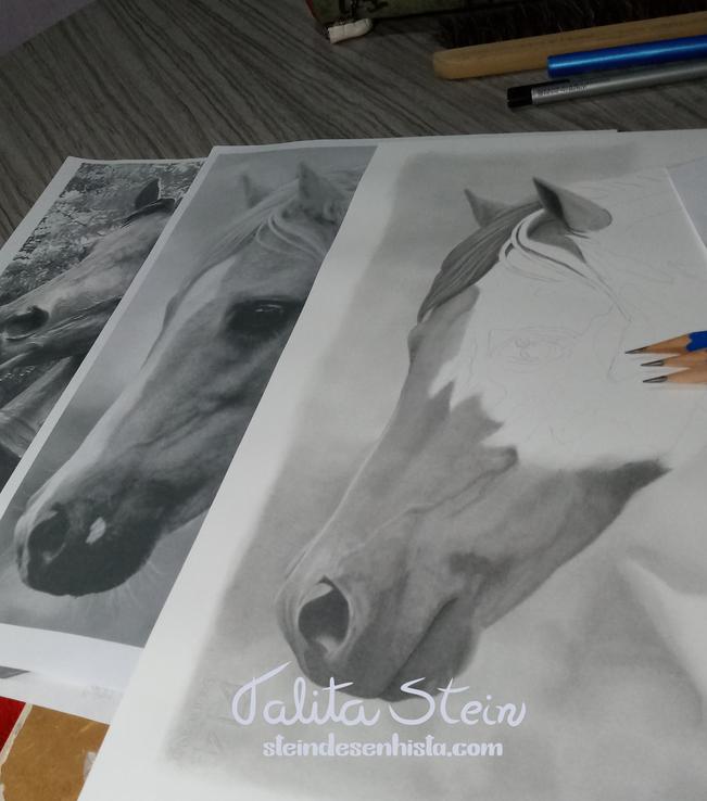 Talita_Stein-Horse_drawing-Cavalo-Horse-
