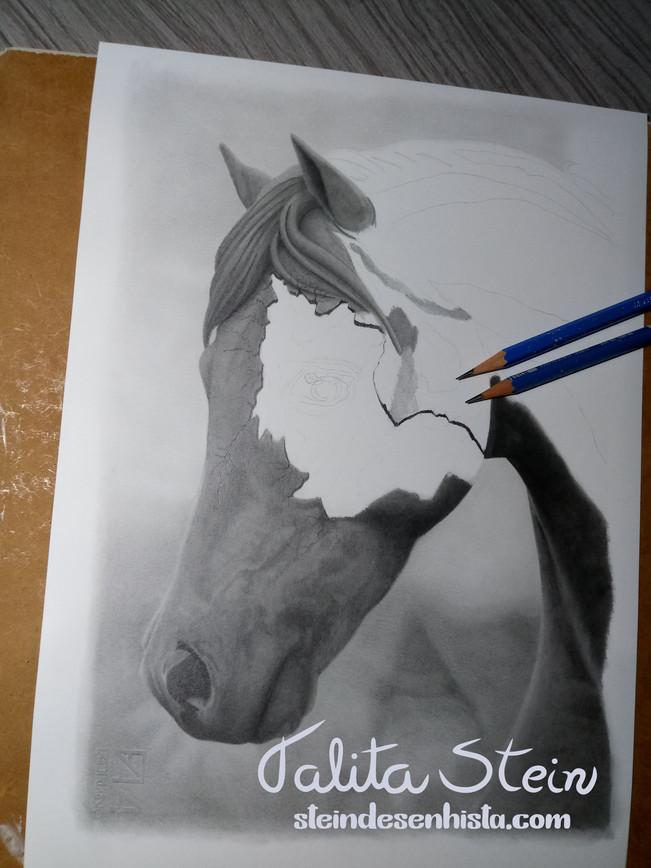 Desenho-Draw-Dibujo-Drawing-Haras-Cabanh
