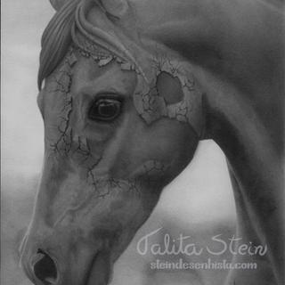 Desenho Realista Artistico De Cavalos Stein Desenhista Brasil