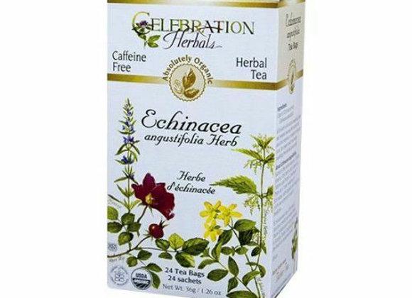 Echinacea Angustifolia Tea