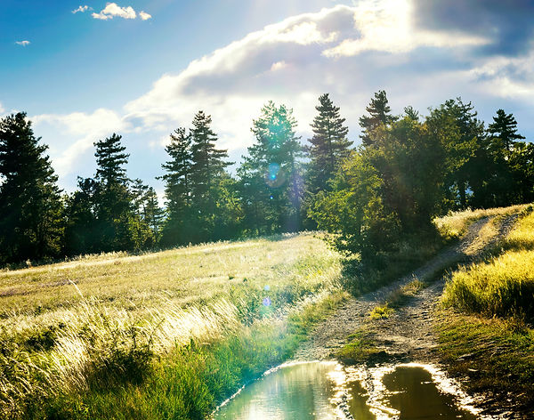 dirt-road-after-rain-in-the-countryside-