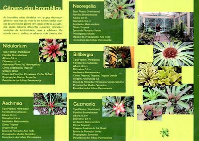 Divulgação do Bromedálio do Jardim Botânico