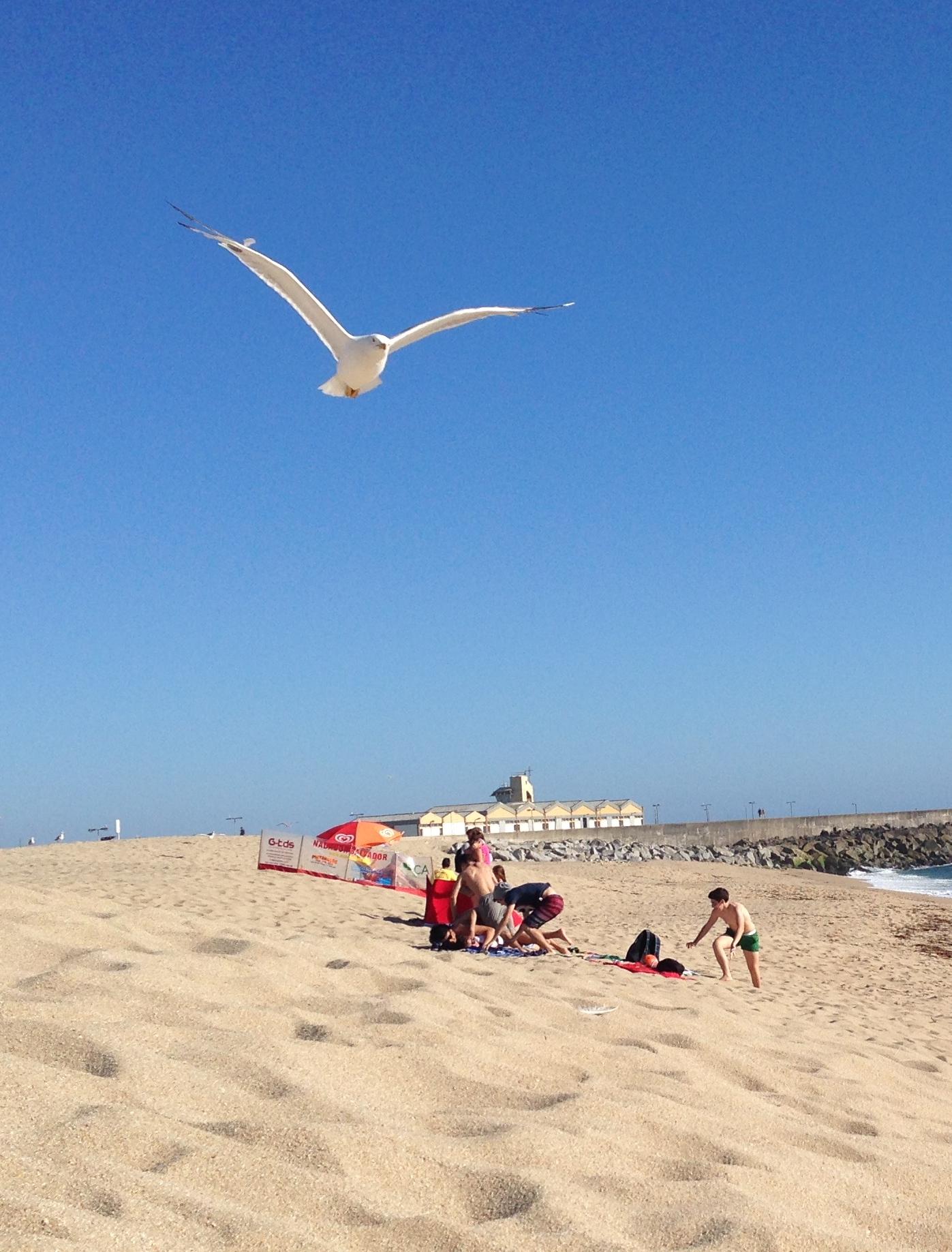 spiaggia di Povoa de Varzim